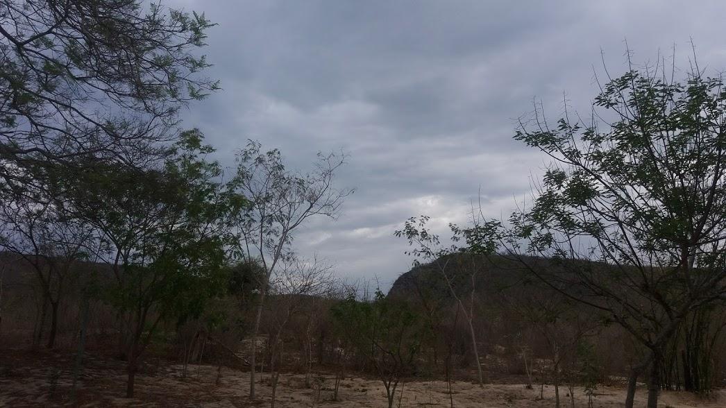 seca 8